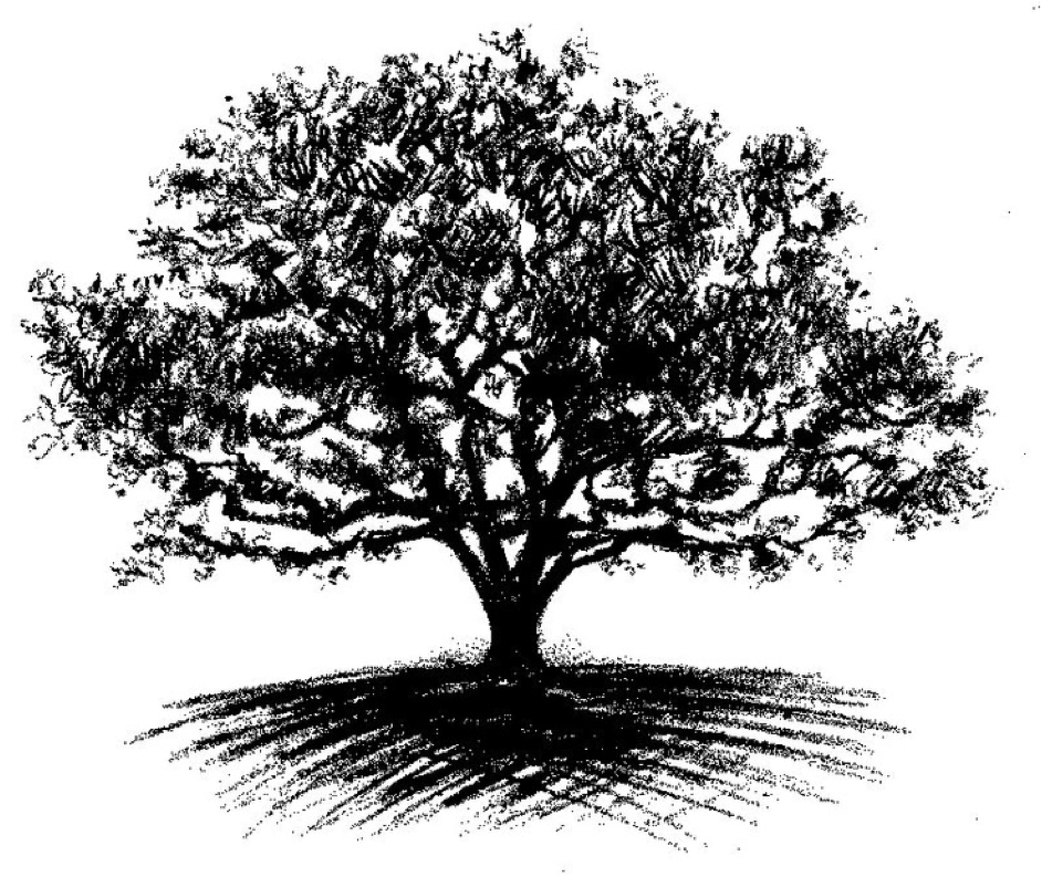 michaeltree